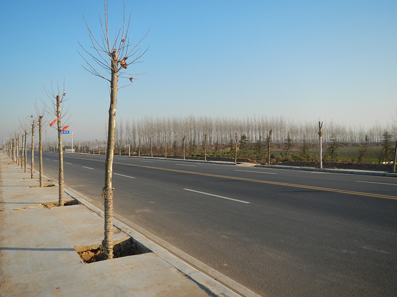 Survey of Second Stage of Zhengzhou Airport-Zhoukou Xihua Expressway in Preliminary Design Phase